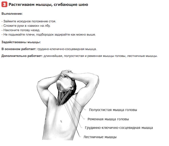 Растяжка мышц шеи (часть 2)